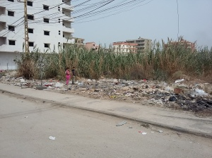 kids 'playing' in the rubbish